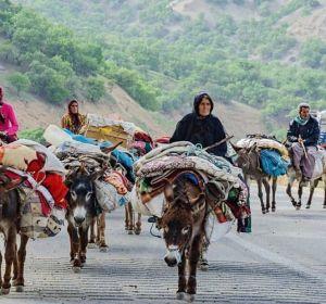 Iran Nomads Migration Tour