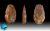 Paleolotic_Period
