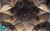 Hasht_Behesht_palace_and_its_Interior_ceiling_2