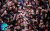Kashan_Mashhad_e_Ardehal_Qalishuyan_Rituals