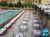 Kerman_Tourist_hotel