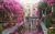 Kohan_Hotel_green_yard