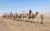 Maranjab__esert_and_Camel_Riding