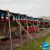Nomads_Tent