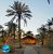 Lout_Eco_camp_6
