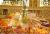 Simorgh_Hotel_Int_Restaurant